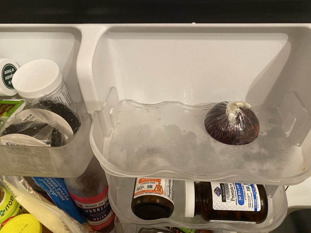How to store cut onions in a fridge.