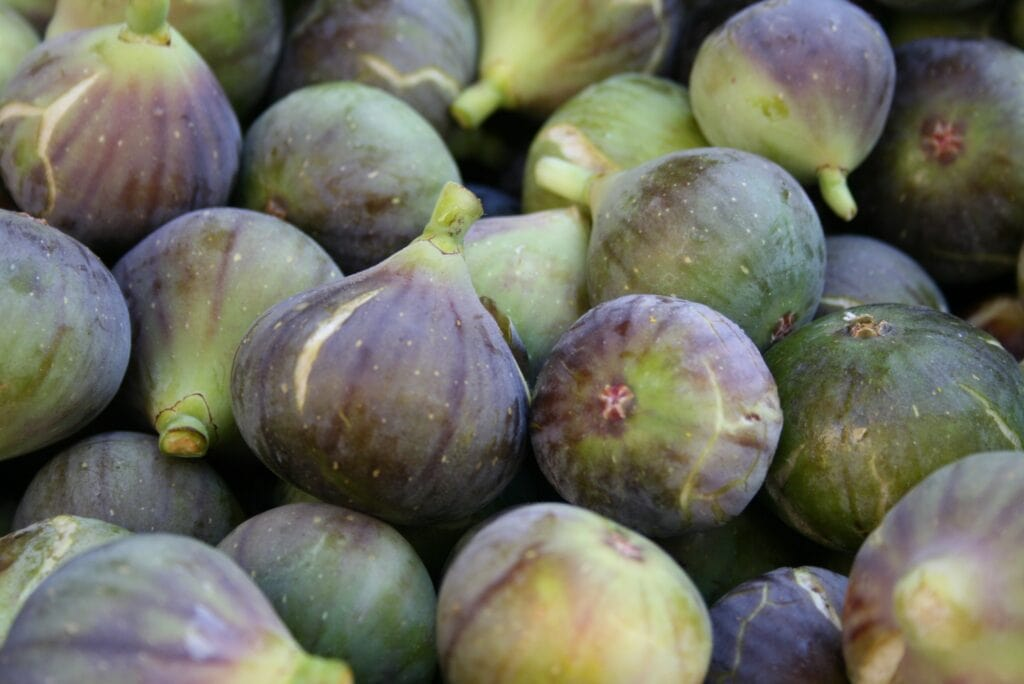 figs are easy to freeze if you have a fig tree with a bounty