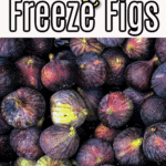 how to freeze figs - the complete guide